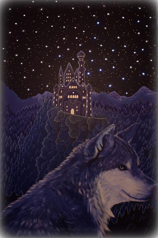 loup détail lumière